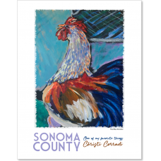Sonoma County CA - The Blue Rooster